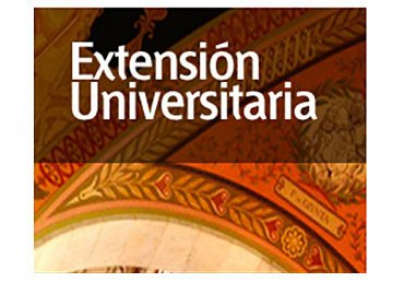 extension-2